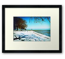 the Art of Winter Framed Print