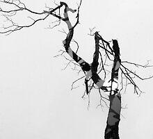 Untitled by Harrattan Parhar