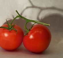 tomatoes diptych part 1 by thvisions