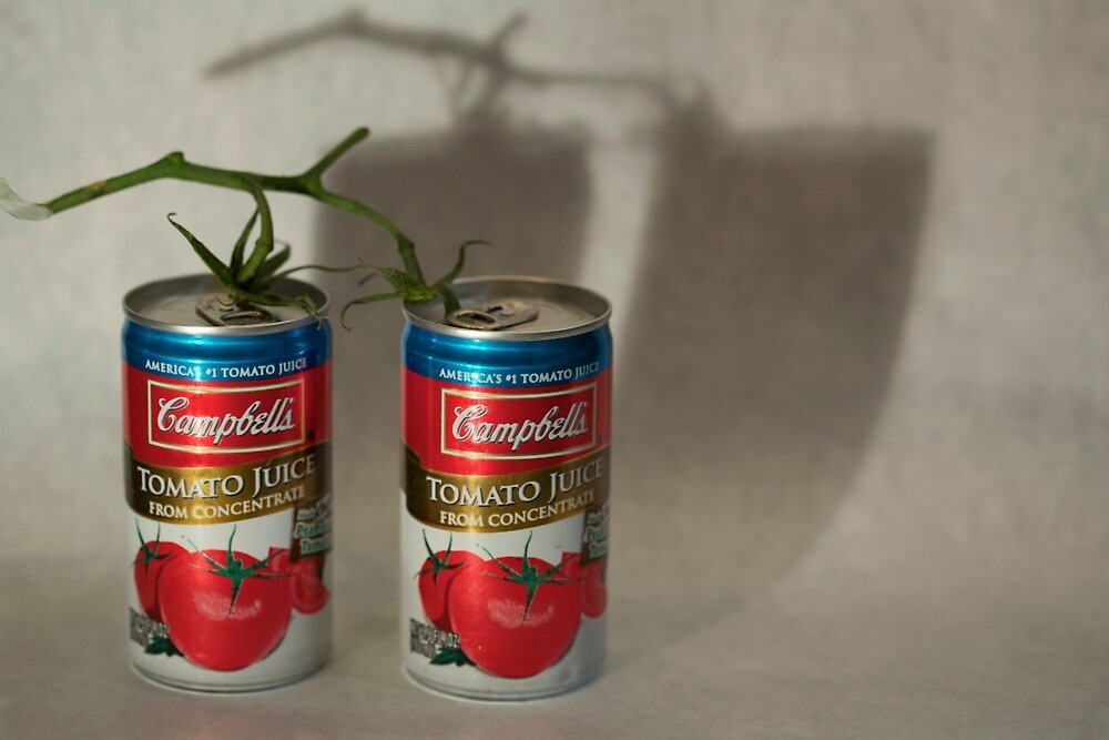 tomato cans diptych part 2 by thvisions