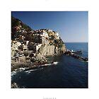 Manarola, Cinque Terre by MassimoConti