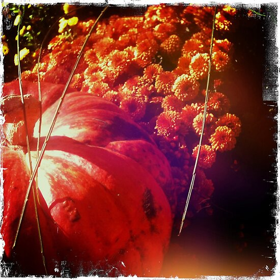 Fall Flowers and Pumkpin by Deirdre Hughes