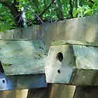 Oregon Bird Houses 01 by ArtzMakerz
