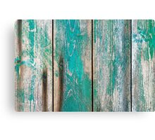 Old green wood Canvas Print