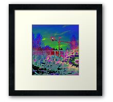 Jodies Crane Framed Print