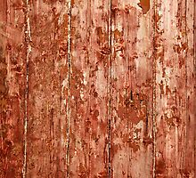 The Red Door by Richard McAleese