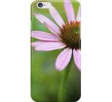 Echinacea purpurea iPhone Case/Skin