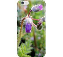 Texas Wildflower - iPhone - iPod Case iPhone Case/Skin