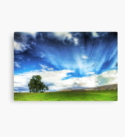 Country Meadow Canvas Print