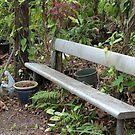 A Bush Garden Bench by aussiebushstick