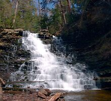 May Sunshine on F. L. Ricketts Waterfall by Gene Walls