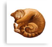 The Big Cat Sleeps into a Ball Canvas Print