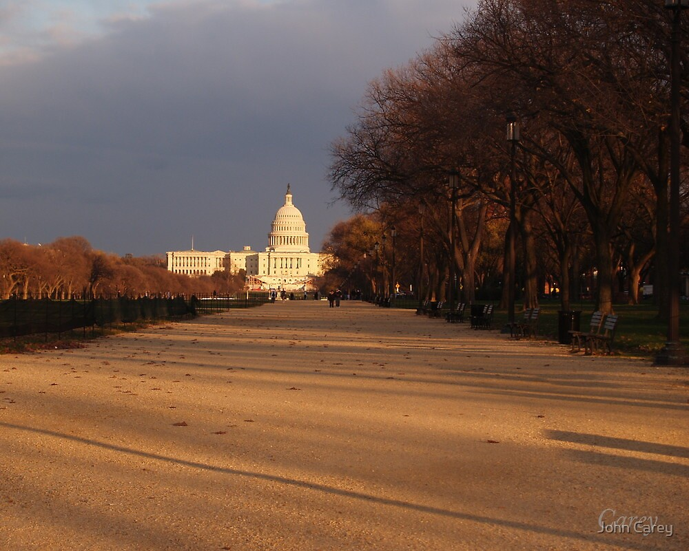 Capitol by John Carey