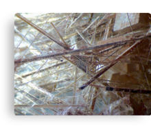 Sticks And Stones (Rutilated Quartz) Canvas Print