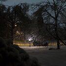 Ice Land by John Carey