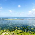 Coral beach Bali in clear morning weather by Hakai Matsu