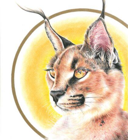 African Cat  Sticker