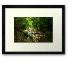 Lamington Dream Framed Print