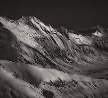 New Zealand Black And White Series by Peter Hitchener