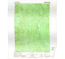 USGS TOPO Map New Hampshire NH Dummer Ponds 329541 1988 24000 Poster