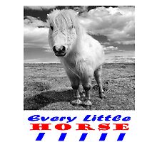 Every Little Horse  by Rob Hawkins