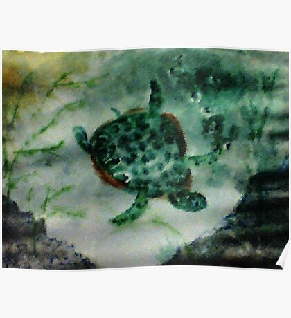 Sea Turtle, watercolor Poster
