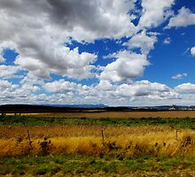 coming home from Launceston by Alenka Co