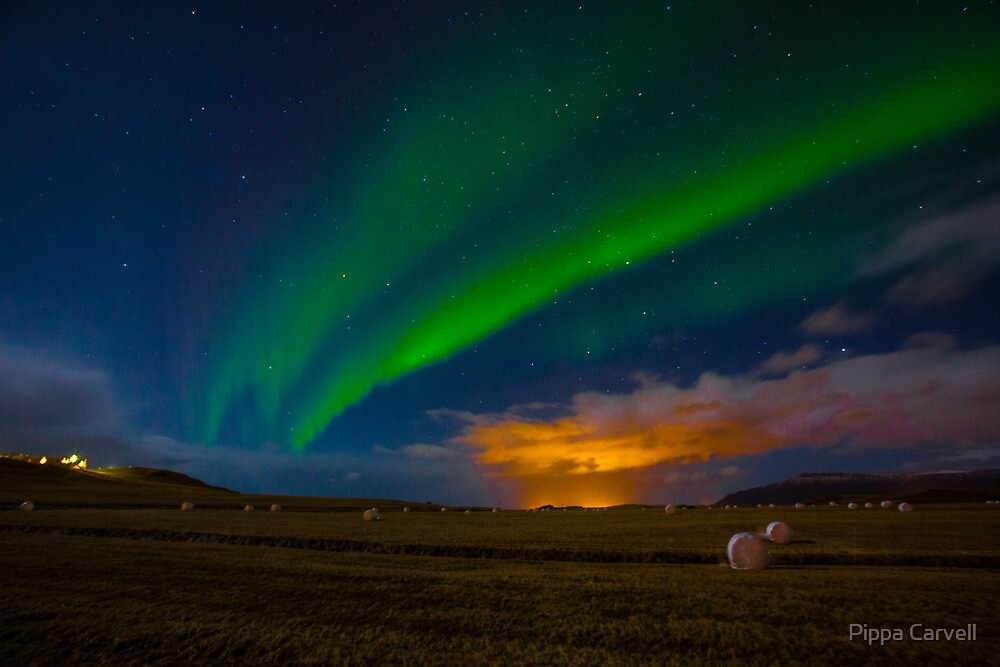 Aurora Borealis  by Pippa Carvell