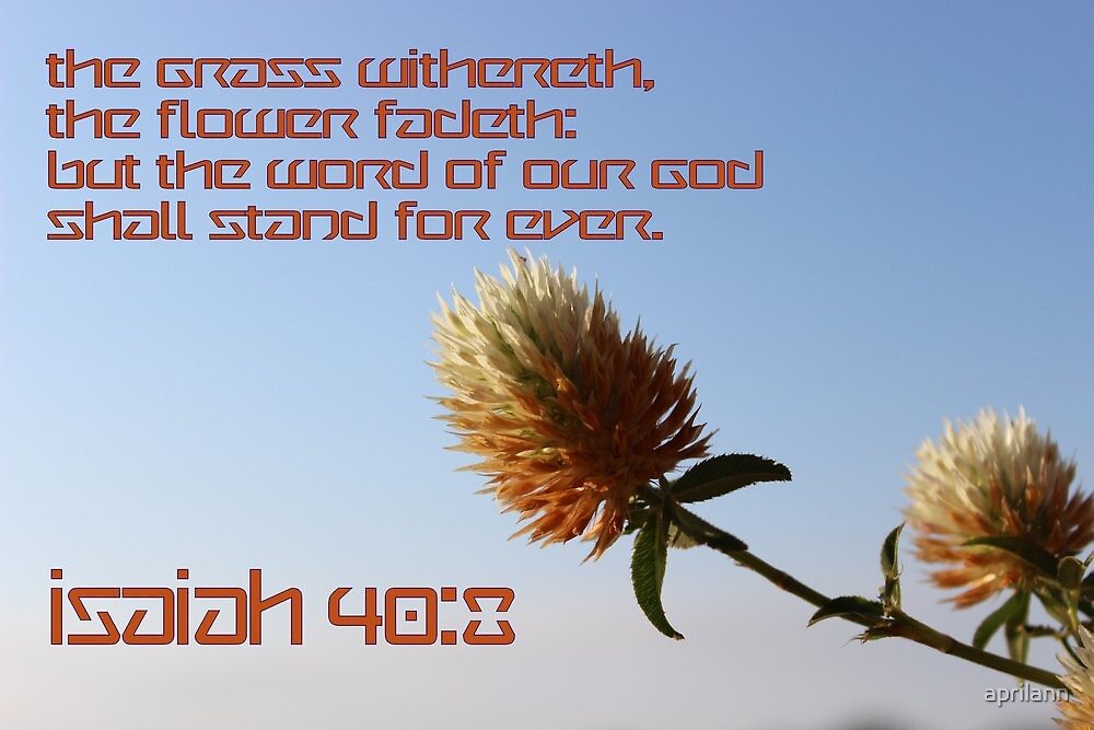 The Word of Our God Shall Stand For Ever by aprilann