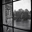 Over the moat, beyond the trees, far far away...... by Karen E Camilleri