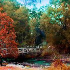 Hareittvile suspension bridge autum colours by Glen Johnson