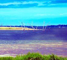 Lake Hume  by Glen Johnson