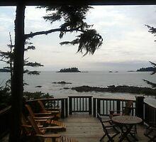 View over the ocean by Brenda Dickie