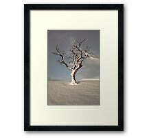 Standing In Snow Framed Print