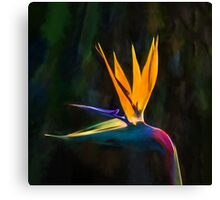 Bird of Paradise Flower (GO2) Canvas Print