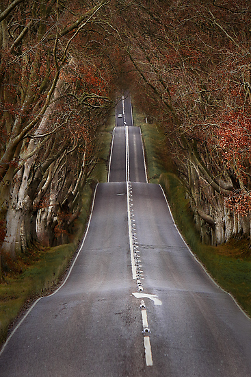 The Long Road by Patricia Jacobs CPAGB LRPS BPE3