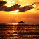 Canary Sunset by Ryan Davison Crisp