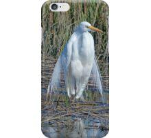 Queen of the Salt Marsh Iphone Case iPhone Case/Skin