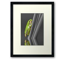 Newly Hatched Tree Frog - Selective Color Framed Print