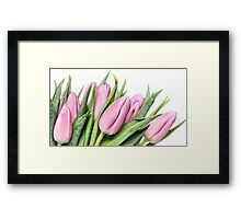 Tulips.... my first this year! Framed Print
