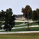 Calumet Fences II Lexington by John Carey