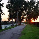 Evening Road Kentucky by John Carey
