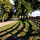Evening Road II Kentucky by John Carey