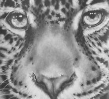 Up Close Jaguar by BarbBarcikKeith