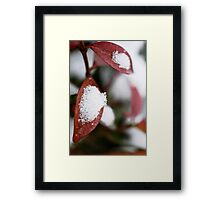 Blood White Framed Print
