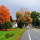 Autumn Upstate II by John Carey