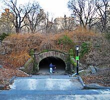 Central Park - Couple Under the Bridge by emcreates