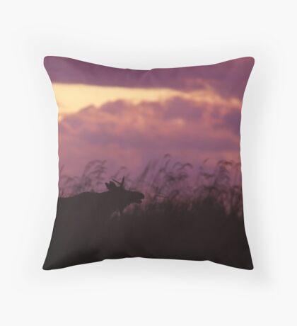 Rutting Bull Moose Throw Pillow