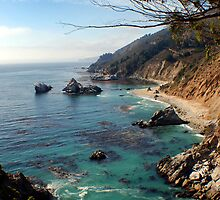 The Big Sur by Lucy Adams