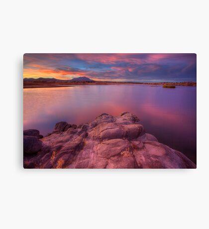 Willow Lake Pink Blue Canvas Print